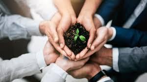 Consultoria ambiental empresas